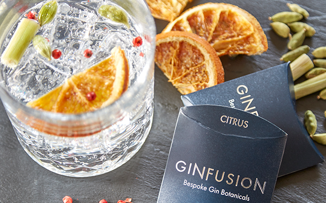 Citrus Ginfusion dried botanicals and gin and tonic