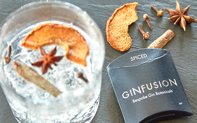 Ginfusion Spiced dried botanicals and gin and tonic