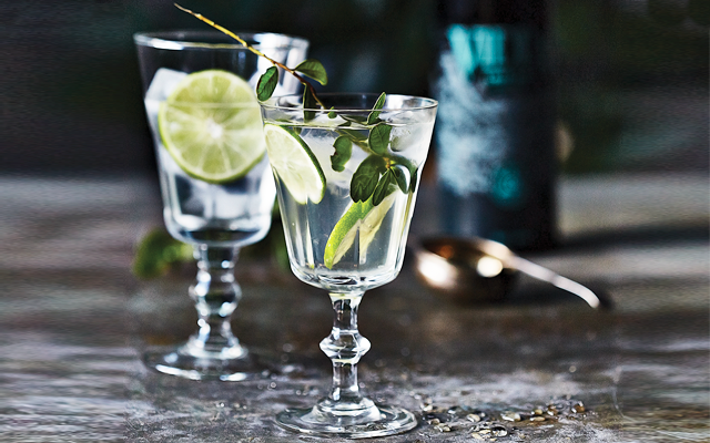 perfect serve vidda torr gin and tonic
