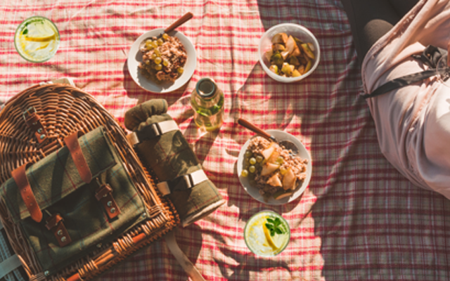 Picnic rug with gin and tonics and picnic food