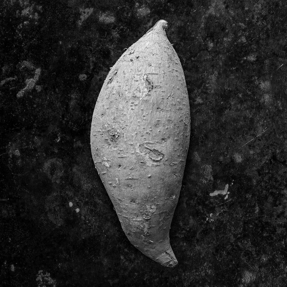 Hernandez Sweet Potato 1 square.jpg