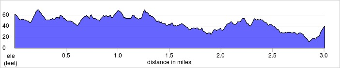 elevation_profile - Fulham Palace.jpg