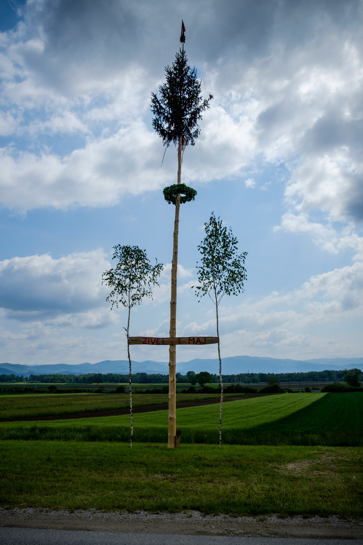 Un arbre de mai slovène.