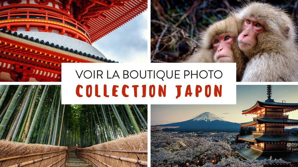 Collection_Photos_Japon.jpg