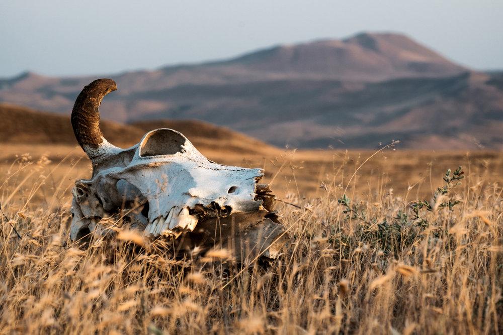 Le climat aride de l'Azerbaïdjan
