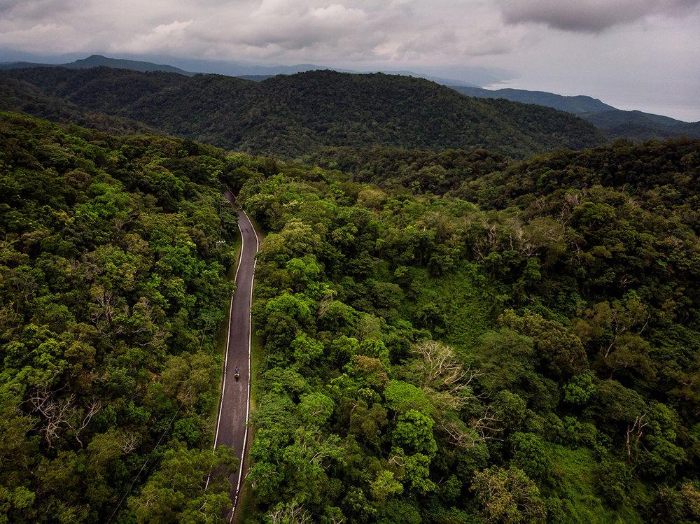 Chemin secondaire à travers l'épaisse forêt du sud de Taïwan.