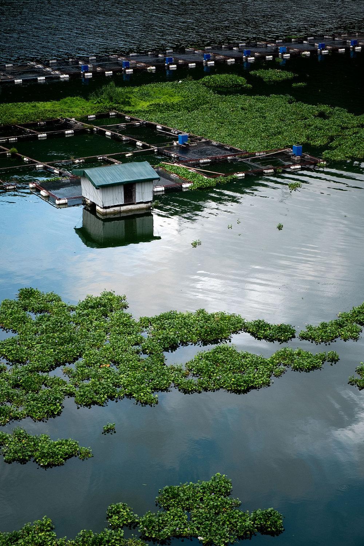 18-08-14---Vivre-sur-l'eau-(Xiongjian,-Chine).jpg
