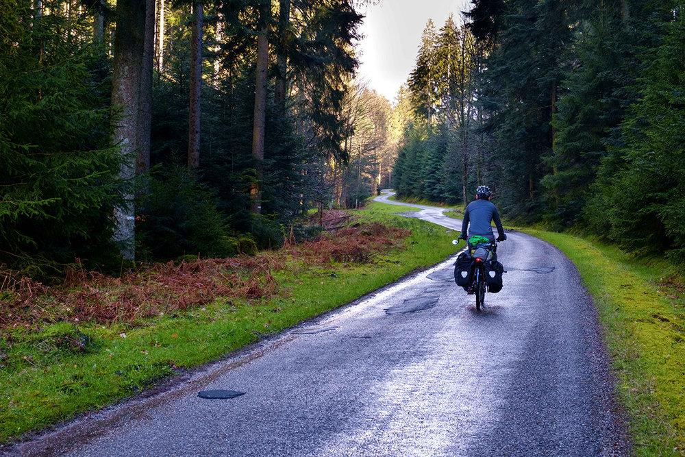 Une petite route forestière dans les Vosges, en France.
