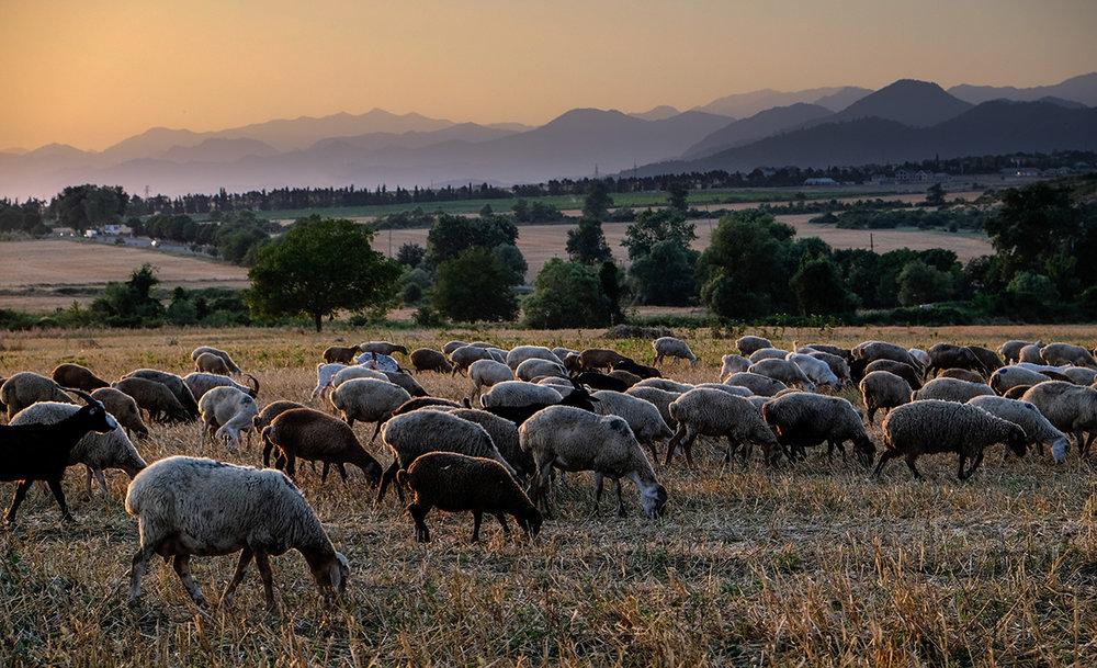Les montagnes du petit Caucase en arrière-plan forment la frontière nord de l'Azerbaïdjan.