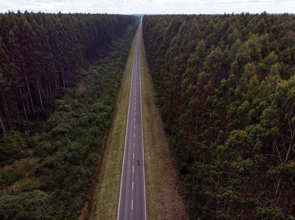 Superbe route forestière allant d'un lac à l'autre.