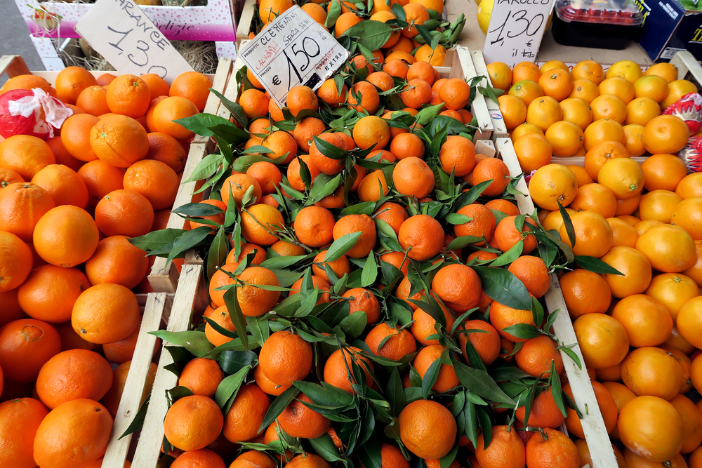 Florence Italy Oranges