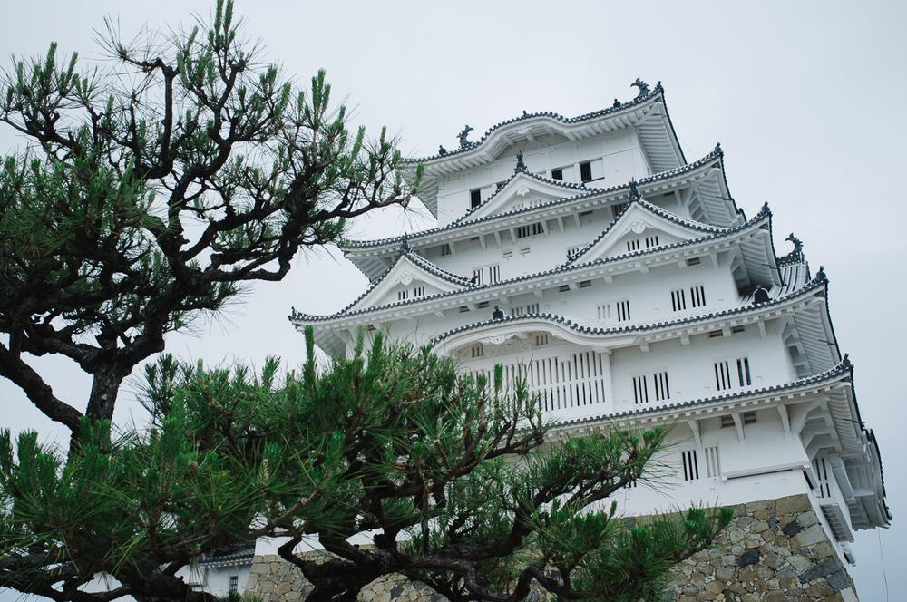 Himeji castle, gleaming