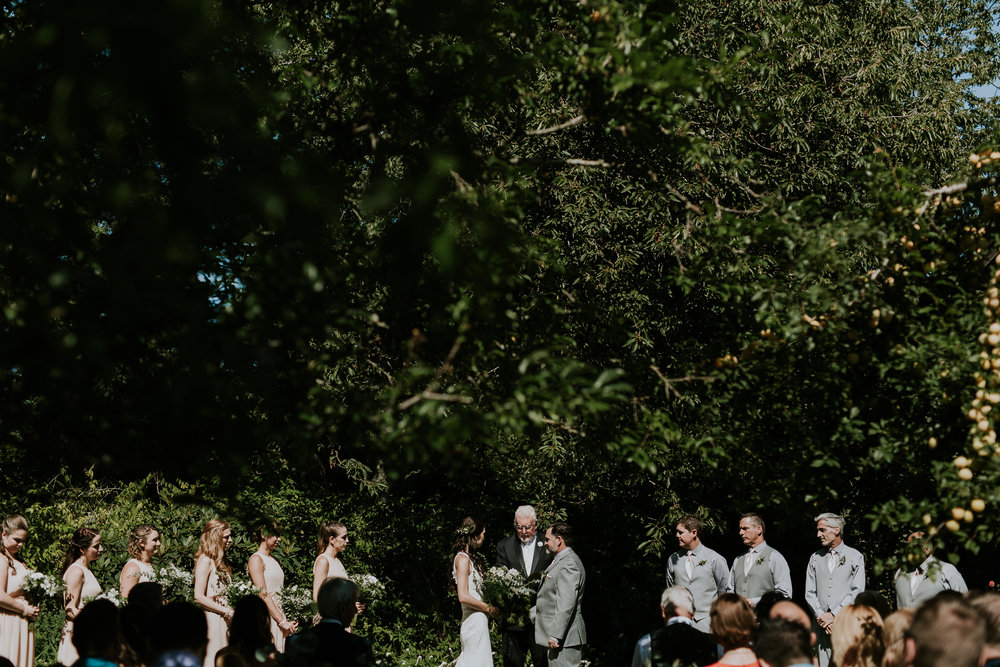 Wide shot of wedding ceremony surrounded by trees at vineyard wedding on Vancouver Island