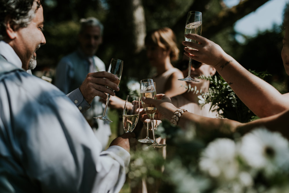 Bridal party cheering with champagne glasses after wedding at Starling Lane winery