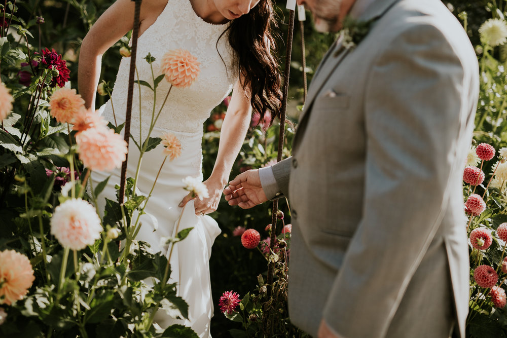 Groom helping bride out of dahlias near greenhouse on Vancouver Island wedding venue
