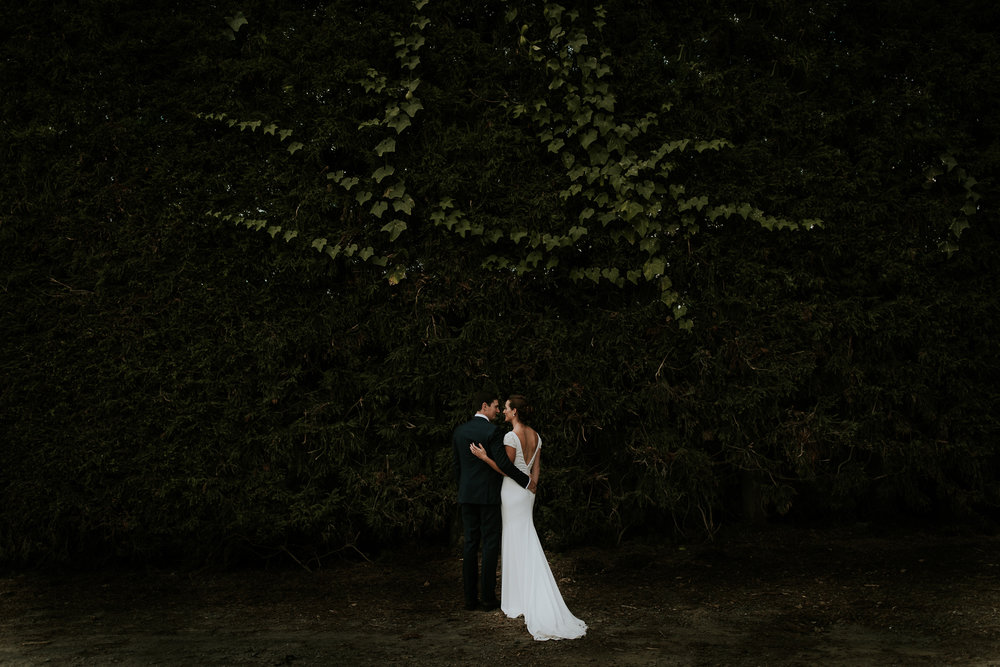 Newlywed bride and groom embracing underneath large hedge after intimate New Zealand wedding in KatiKati