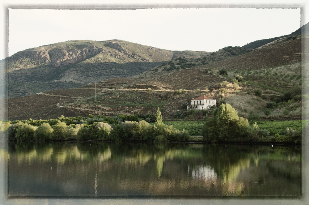Quinta (Estate) on the Douro River