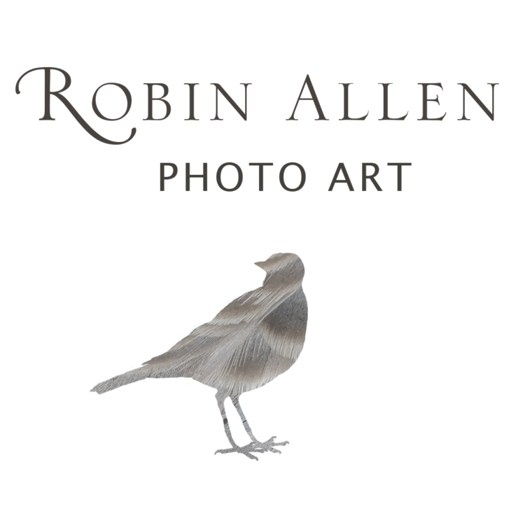 Robin Allen Photography
