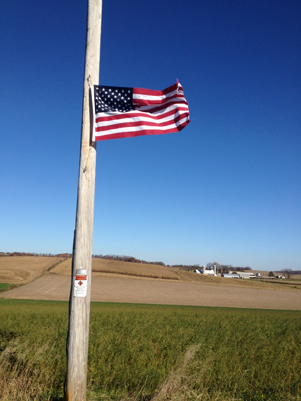 You can get an idea of the wind from the flag.  The tops of the corn stalks were also bent down about 30° .