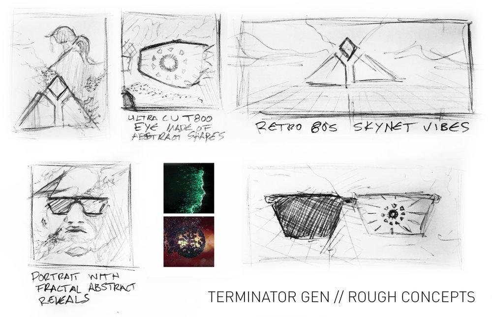 Terminator_boards_002.jpg