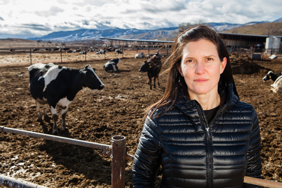 Noosa Founder Koel Thomae at the Graves Dairy in Colorado