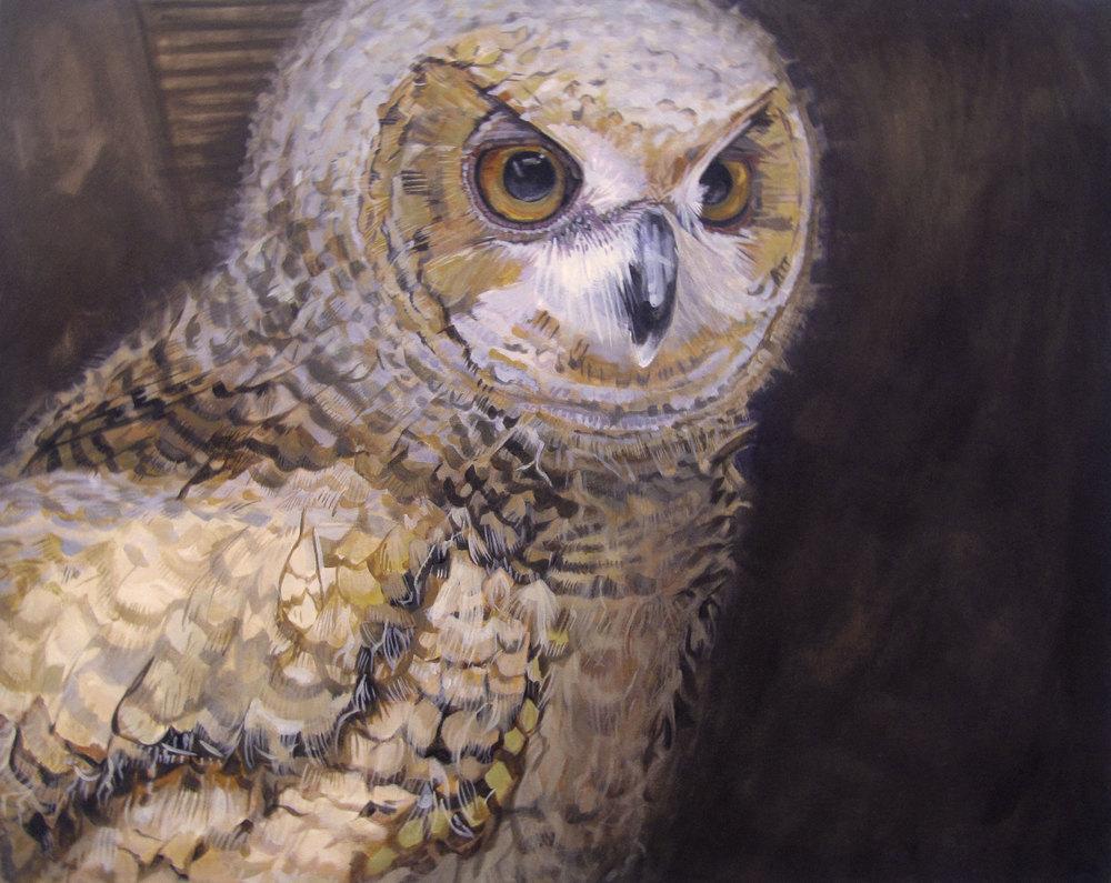 Acrylic painting of an Eurasian eagle owl chick.
