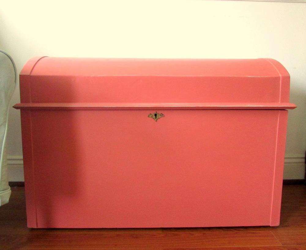 pink+trunk3.jpg