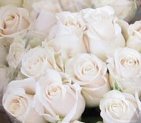 Roses+in+December.JPG