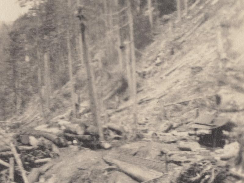 Image 1 (detail)