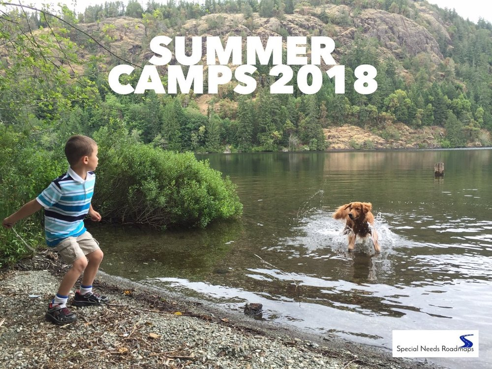 special needs summer camp listing special needs roadmaps