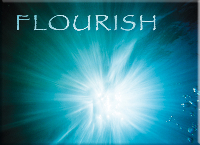 Flourish Card from the Ask the Light Miracle cards. Underwater Photography from Barton Springs in Austin Texas. We like to use the cards when watching Oprha on Super Soul Sunday!