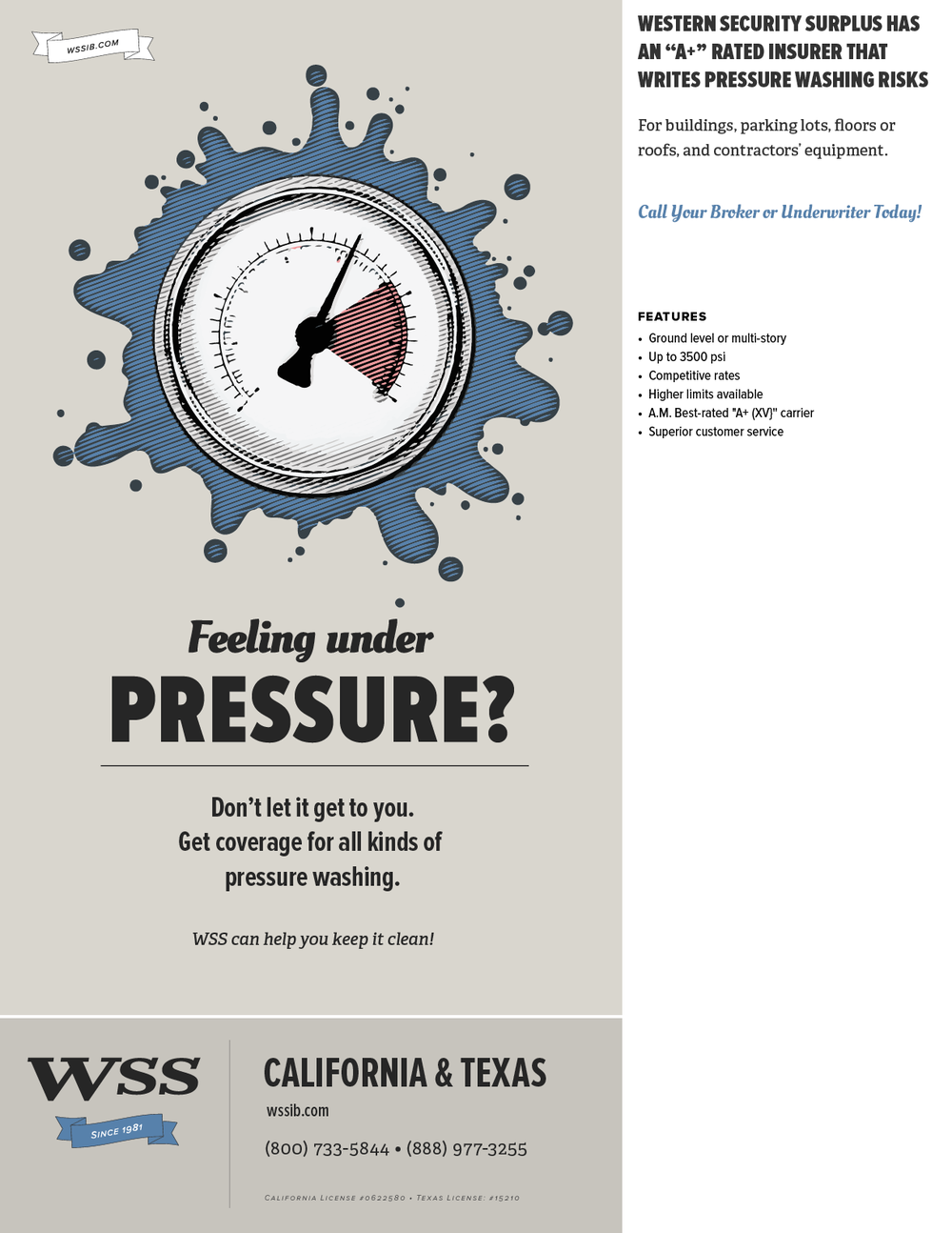 WSS-Flyer-PressureWashing.png