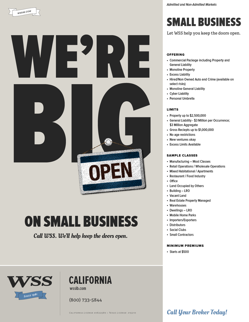 WSS-Flyer-SmallBusiness-CA.png