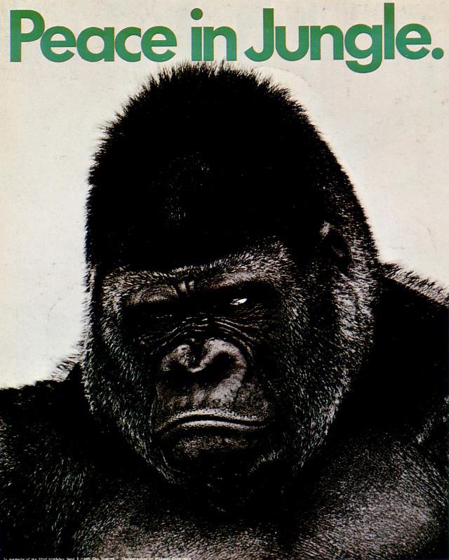 Peace in Jungle (Gan Hosoya, 1968)