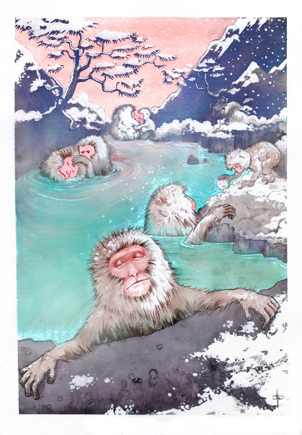Snow Monkeys_web.jpg