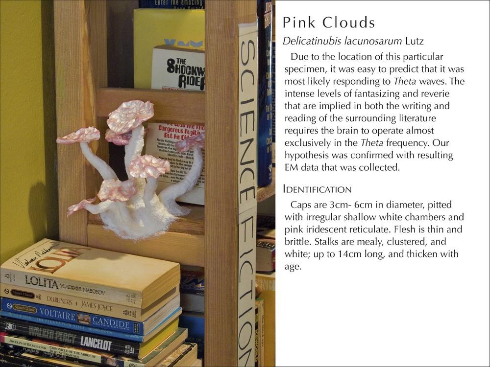PinkClouds2_WText.jpg