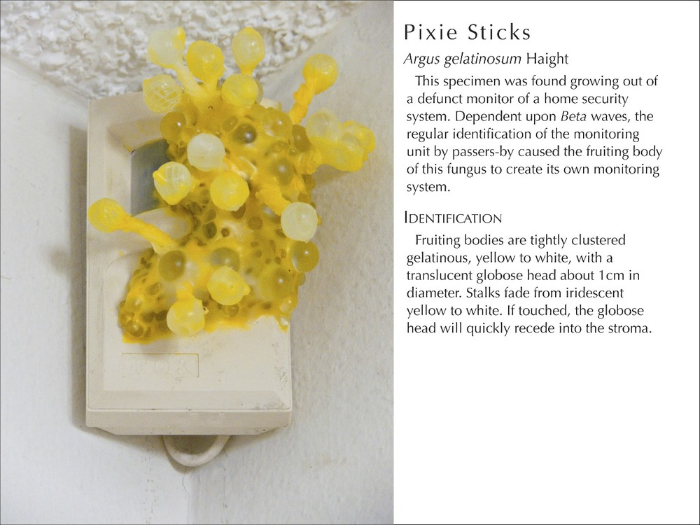 PixieSticks2_WText.jpg