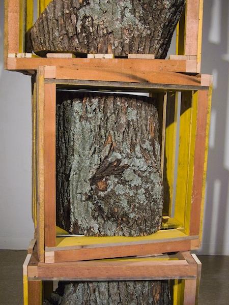 TB_TreeBlocks_Detail.jpg