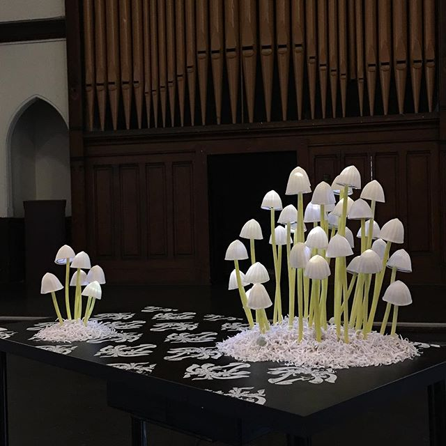 So there is lots of natural light at the Nyia Page Community Center and my work responds to the fluctuations by glowing. @cjjilek caught it doing some cool business and was kind enough to send me this picture. #nceca2018 #ncecasubversiveflower #porcelain #installationart #ceramics