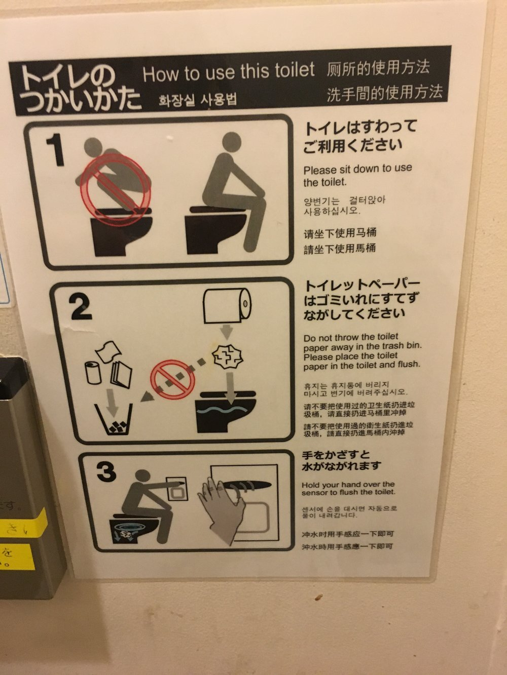 I found this in a bathroom in the Sendai train station. I was horrified to discover that all these years I needn't have been climbing onto the toilet seat.