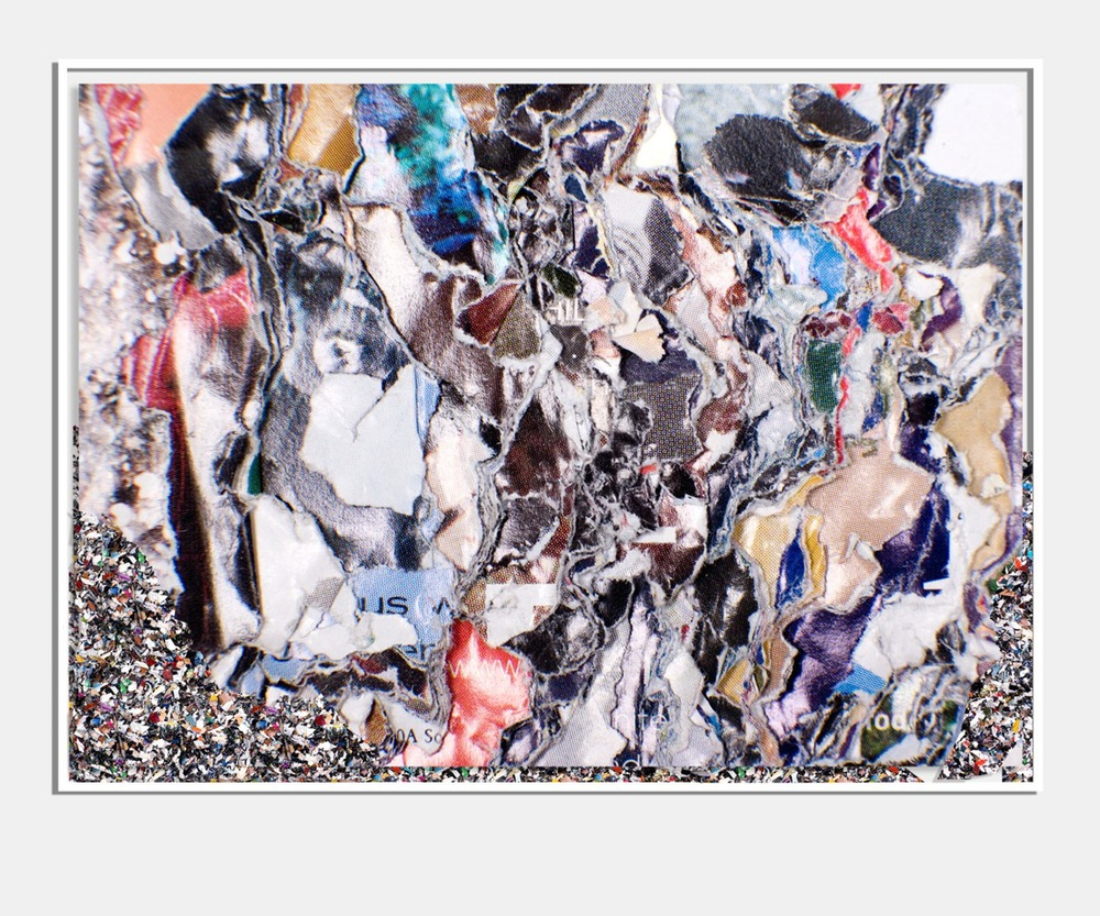 Jordan Doner      AmazonNesting-Detail   _I     30 x 40 2008-13    Digital C-Print    Nesting Shredded from Magazines    Framed