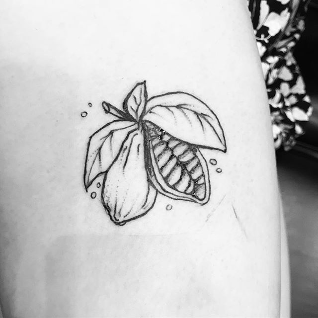 A cocoa bean pod, drawn by the incredible @sob_comix 😊  #tattoo #tattoos #torontotattoo #torontotattoos #yyz#thesix #the6ix #torontotattooartists #torontotattooartist #sketchtattoo #plants #girlswithink #girlswithtattoos #tattooedgirls