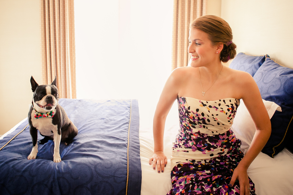 i heart dogs - 6 easy ways to include your dog in your wedding
