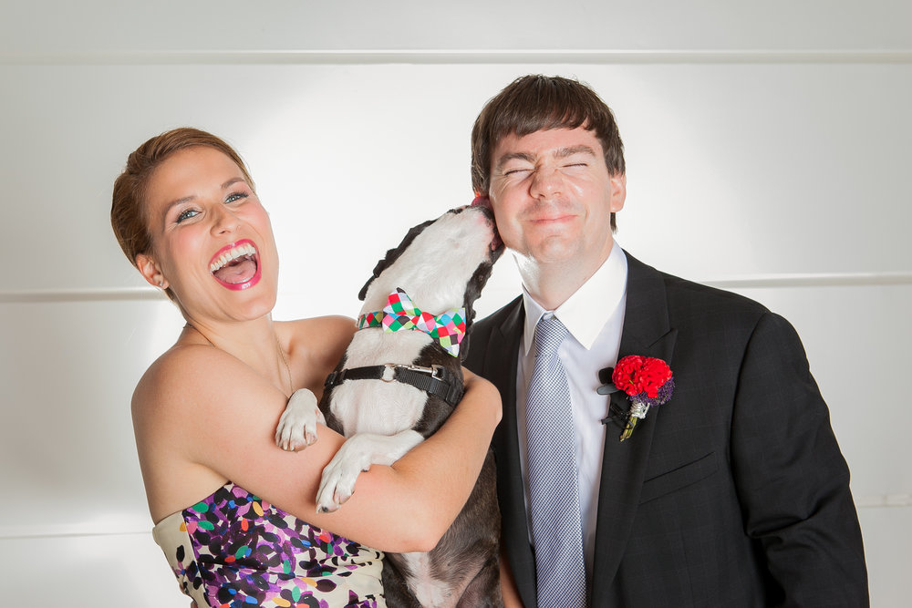 love inc. - 5 Expert Tips for Including Your Pup in Your Wedding