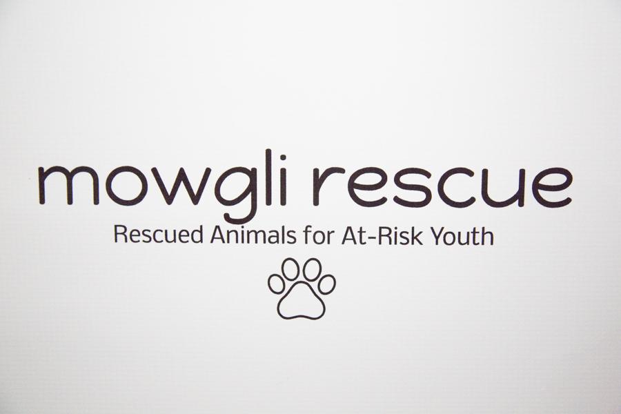 Mowgli Rescue-15.jpg