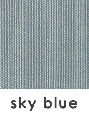 BWM_Swatch 1x1 and text_Sky Blue.jpg
