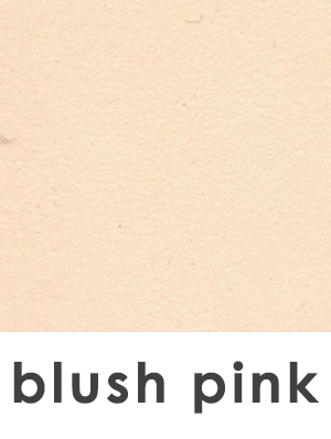 BWM_Swatch 1x1 and text_blush.jpg
