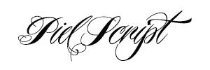 BWM_web_typefaces_Piel Script.jpg