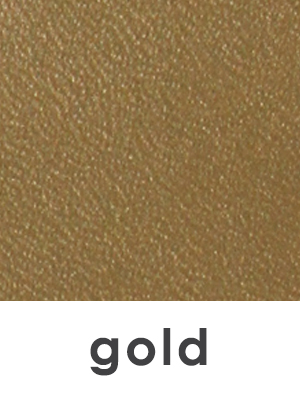 BWM_Swatch 1x1 and text_gold.jpg