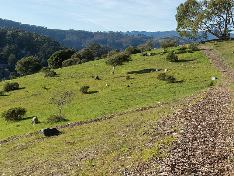 Fernwood burial grounds